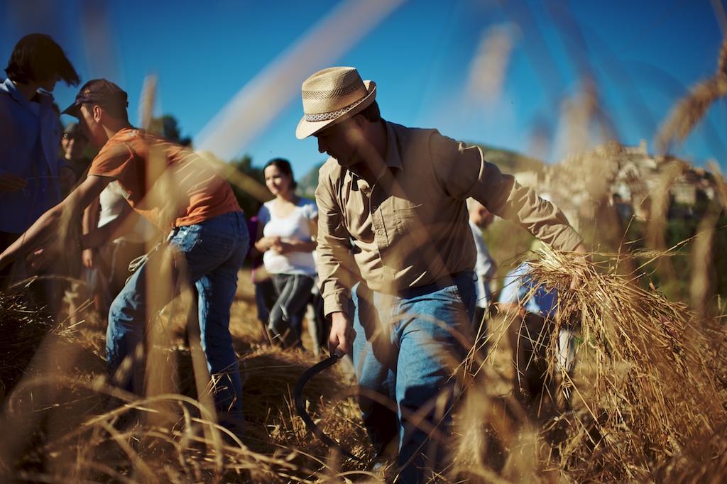 Agricoltura 2.0: recuperare tradizioni per costruire il futuro.